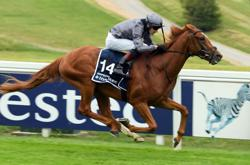 Horse racing: Serpentine stuns favourites to win Derby
