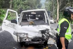 'Flying' durian injures lorry driver and co-worker