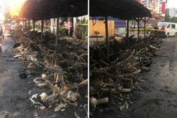 Blaze destroys 53 m-cycles and eight cars
