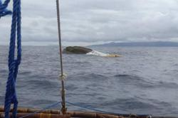 Philippine Coast Guard calls off search for 14 missing people in boat collision