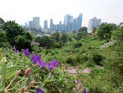 Bangsar urban farm applies to lease land