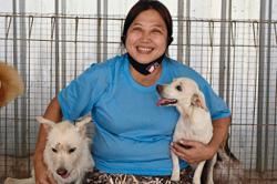 Rescuing helpless canines from pandemic peril