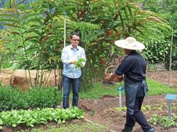Farm-to-table organic freshness at retreat