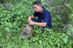 Monkey trainer rejects Peta claims of abuse