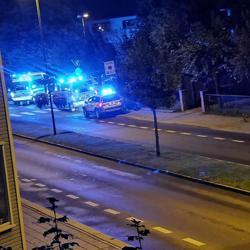 Norwegian police arrest man after three women stabbed