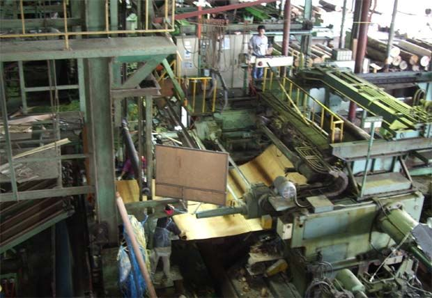The wood-based product maker won\'t be classified as a PN17 company due to  relief measures that would be in effect from April 17,2020 to June 30,2021. (File pic shows a Cymao timber processing factory)