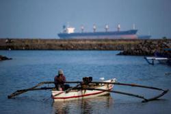 Indonesian coal plant taints South Korea's green pledge