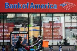 Bank of America profit more than halves on pandemic woes