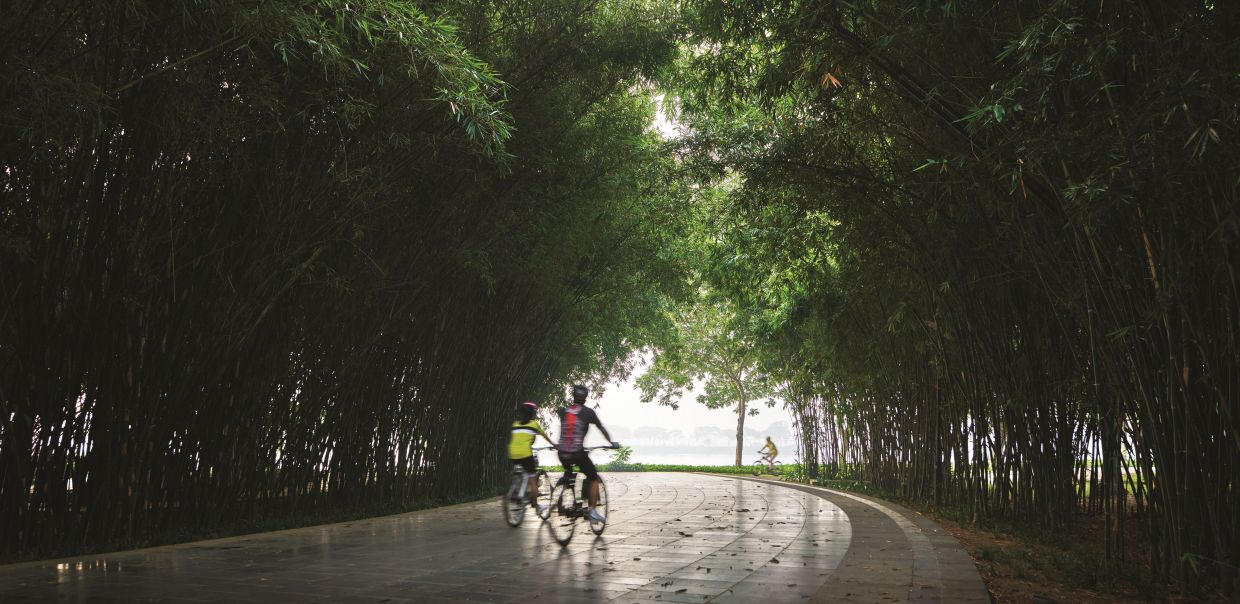 Yen So Park is filled with mature trees, comfortable for biking and outdoor activities