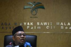 RM65bil-RM70bil palm oil, product exports for 2020