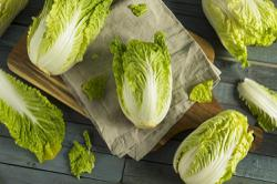 Indonesia: Rp1.2 billion of contaminated Korean cabbage seeds culled