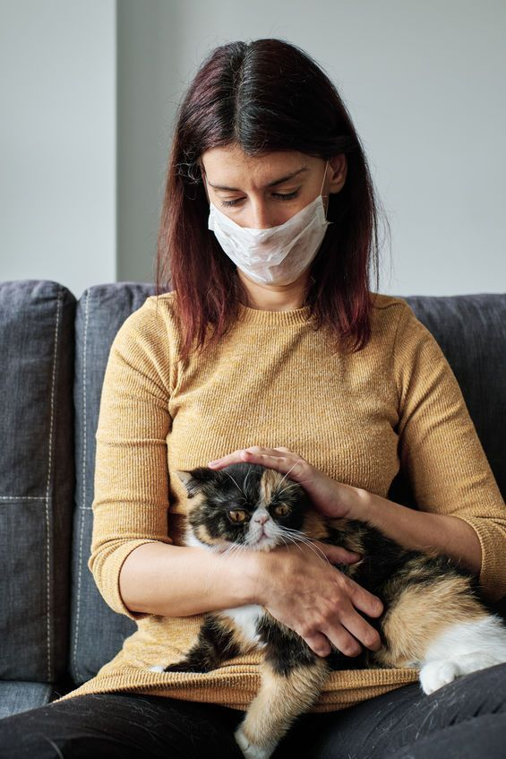 When it comes to individual cats and individual dogs, some will secrete more allergens than others. Also, there is no such thing as a hypoallergenic breed. — 123rf.com