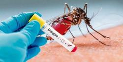 Laos: Dengue cases on the rise; govt focuses on fight against dengue fever