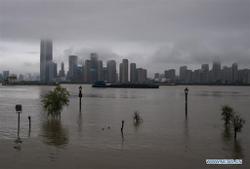 Two killed as heavy rainstorm lashes China's Hubei
