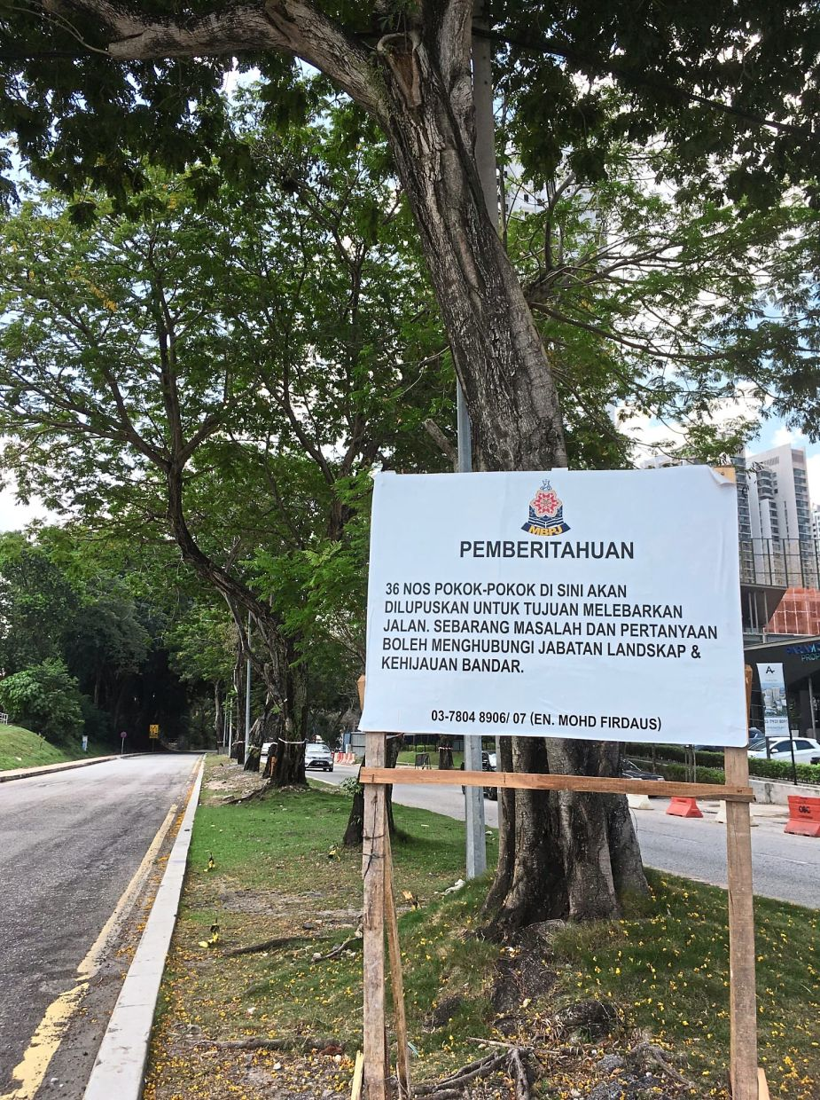 The notice by MBPJ on the plan to fell 36 trees along Jalan Universiti.