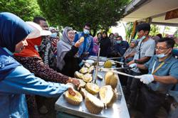 'Register durian kampung for grading as premium product'