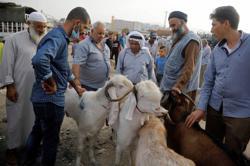 In West Bank, Eid sacrifices plummet as Palestinian virus cases soar