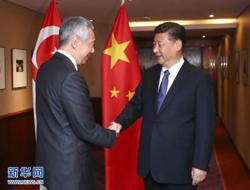 China and Singapore leaders discuss cooperation amid pandemic
