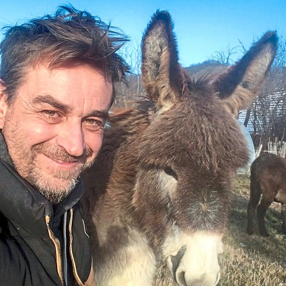 'Donkey Man' provides safe haven for donkeys in Romanian village