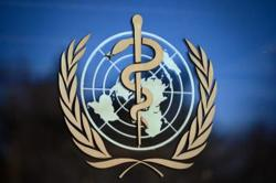 WHO: Wuhan 'not necessarily' zoonotic source of Covid-19