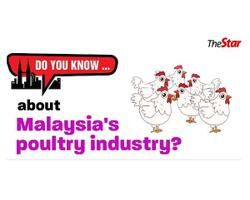 Do you know ... about Malaysia's poultry industry?