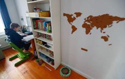 German girls more studious, boys on screens during pandemic - survey