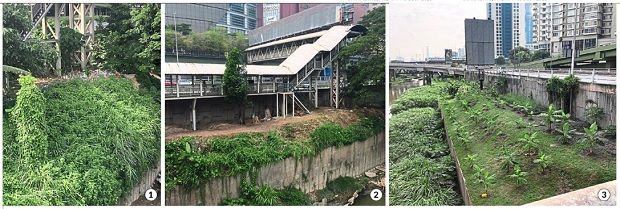 Prime transformation: (1) The original condition of the the riverbank between Mid Valley City and Pangsapuri Abdullah Hukum in Kuala Lumpur. (2) FoSKL Mid Valley River Three cleared  the land.  (3) Nearby  residents now plant vegetables at the plot.