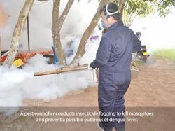 Laos govt calls for public vigilance against dengue in rainy season