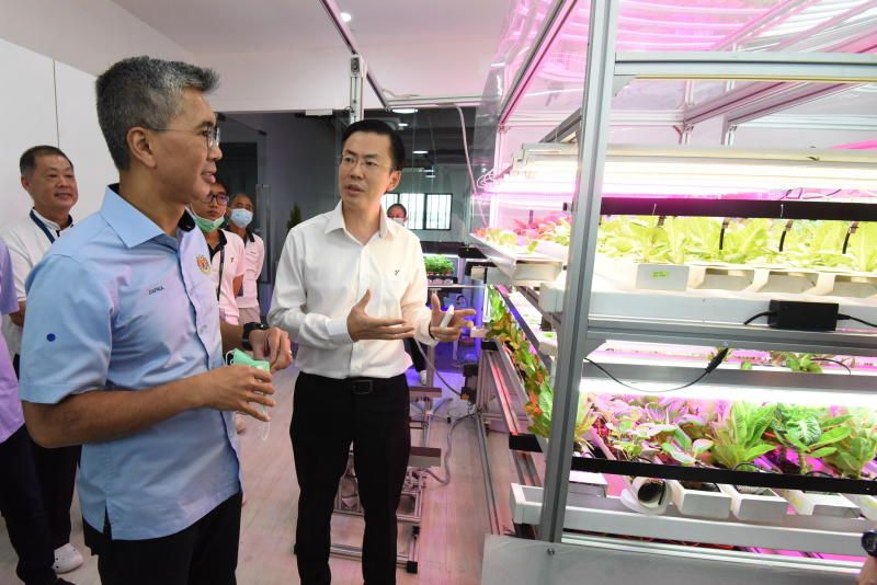 Finance Minister Tengku Datuk Seri Zafrul Tengku Abdul Aziz being briefed by ViTrox Campus 2.0 CEO Chu Jenn Weng (right) about the \'hydroponic\' plant system displayed during visiting ViTrox Campus 2.0 at Batu Kawan, Penang. - Starpic by MUSTAFA AHMAD/The Star/8 Aug 2020.