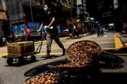 Hong Kong reports 69 more virus cases as total surpasses 4,000