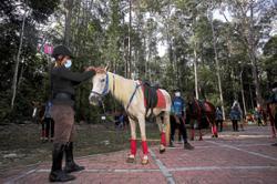 Port Dickson forest reserve rebranded for tourism