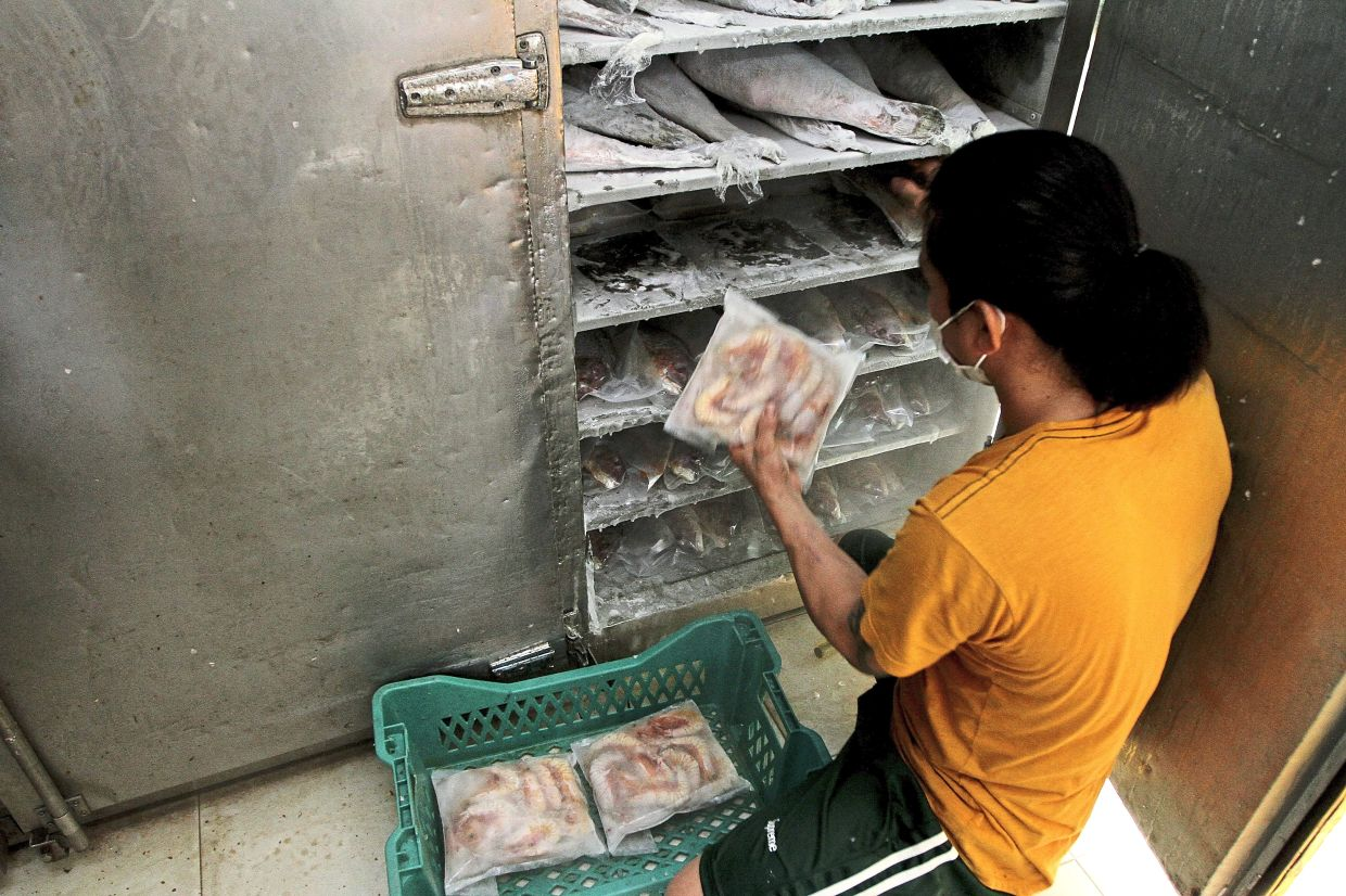 Seafood that has been cleaned and cut is vacuum packed and put into freezers. — YAP CHEE HONG/The Star