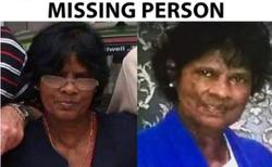 Pelvic bone DNA compatible with Aussie woman who went missing three years ago in Penang