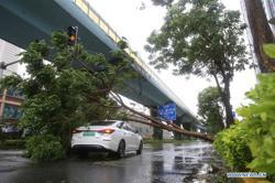 Typhoon Mekkhala makes landfall in China's Fujian and creates havoc