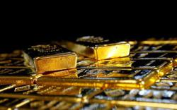 Gold dives as dollar holds gains and shares bounce