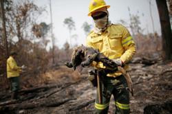 Brazil's Bolsonaro calls surging Amazon fires a 'lie'