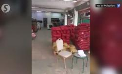 Batu Caves wholesale store in viral video is owned, run by M'sians, says City Hall