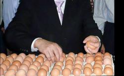 Higher egg prices boon for Teo Seng