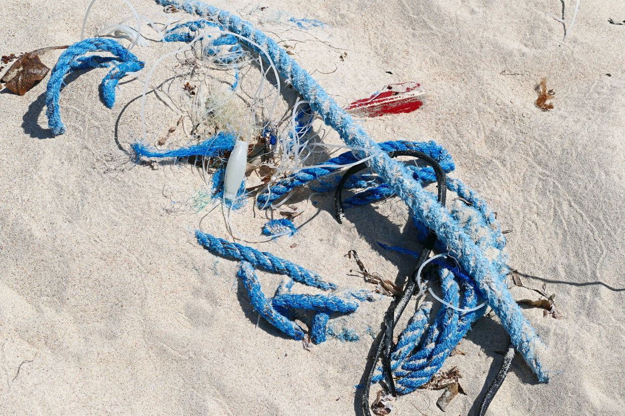 Fishermen often abandon worn-out equipment on the quayside, or even throw it overboard at sea.