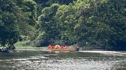 Discover ancient rainforest secrets in Mulu, Sarawak