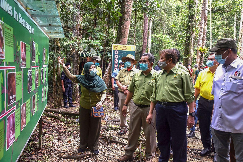 Chief Minister Datuk Patinggi Abang Johari Tun Openg (third right) being briefed on the facilities at the Semenggoh Wildlife Centre.