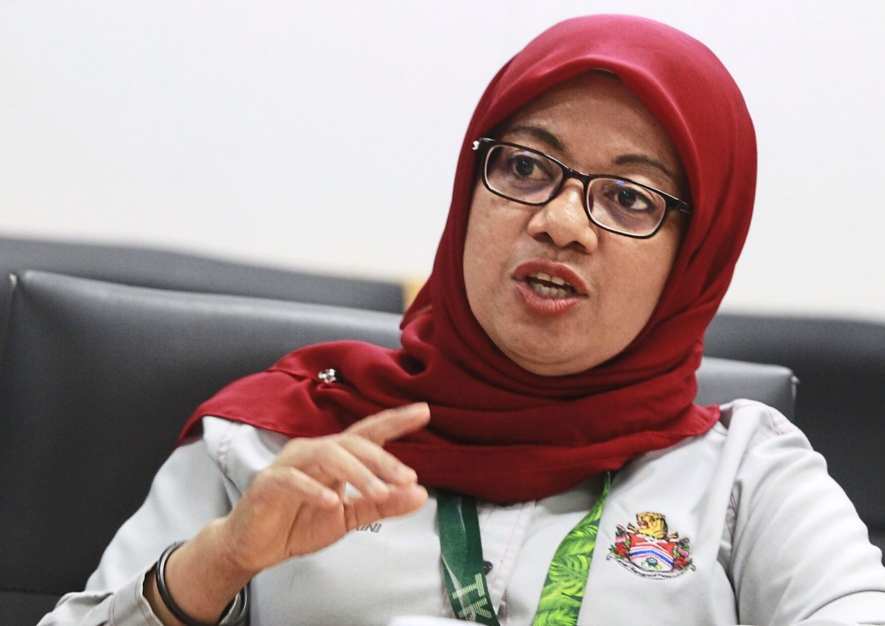 Norzaini says DBKL hopes to  monetise Panggung Bandaraya  to cover its upkeep.
