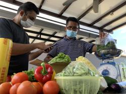 Malaysian starts vegetable distribution network to aid Cameron Highlands farmers