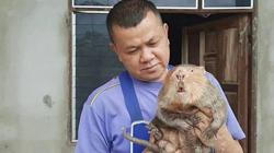 Thai policeman makes a killing with rats