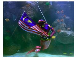 Female diver turns into 'mermaid' to hoist Jalur Gemilang in aquarium