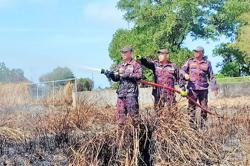Brunei: Forest fires destroy over 500 hectares this year