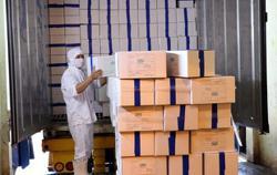 Vietnam begins agricultural exports to EU as trade deal cuts tariffs