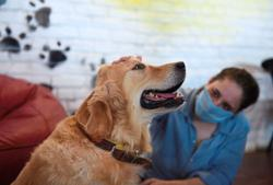 Turning to man's best friend for love and friendship during lockdown