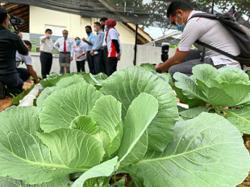 Growing interest in communal farming