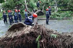 Laos: Tropical Storm Noul causes havoc in the south